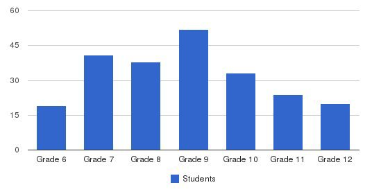 Dominican High School And Academy Students by Grade