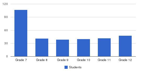 St. Vincent Jr/sr High School Students by Grade