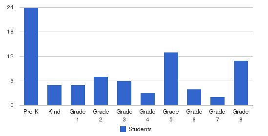 Mother Mary School Students by Grade