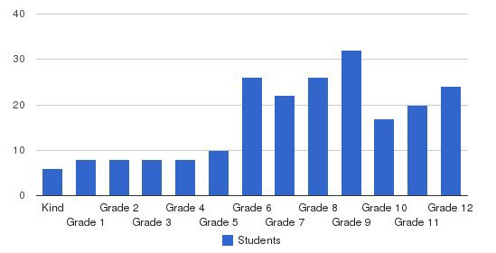 The Child School Students by Grade