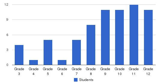 Excelsior Academy Students by Grade