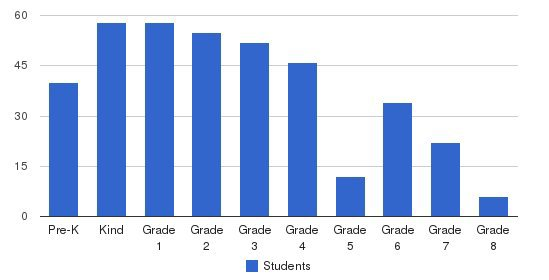 Sunrise Academy Students by Grade