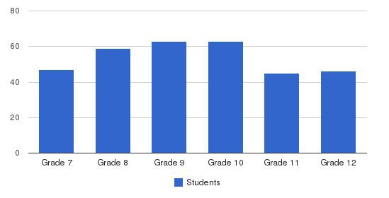 Troy Christian High School Students by Grade