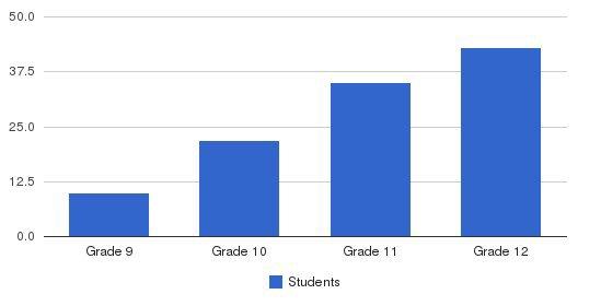 Nashville Academy Students by Grade