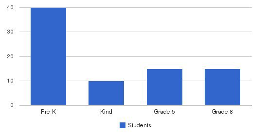 The Learning Company & Academy Students by Grade