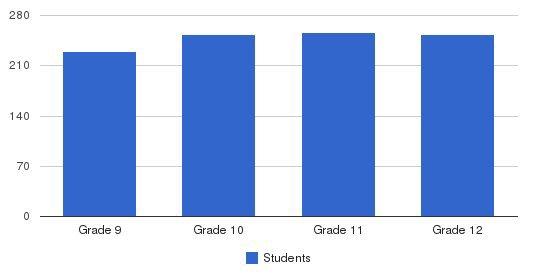 Nolan Catholic High School Students by Grade