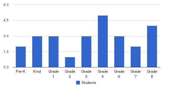The Phoenix School Students by Grade
