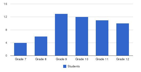 New Directions Students by Grade