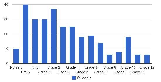 Darul Arqam School Students by Grade