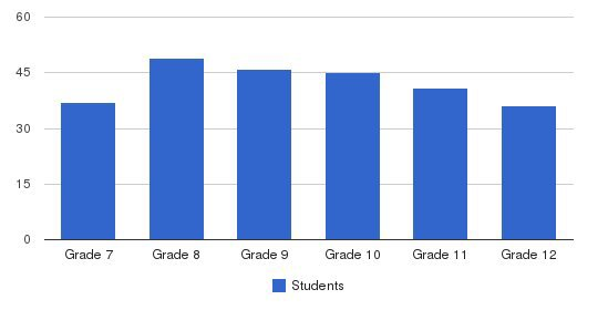 Ief-al-ghazaly High School Students by Grade