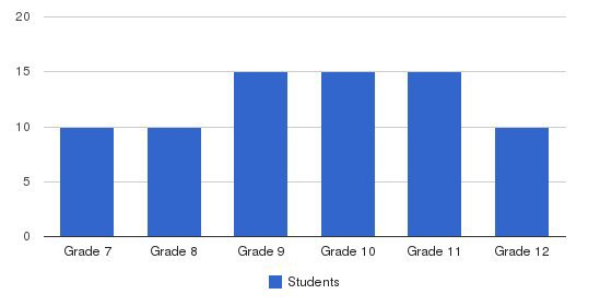 MTC (USA) Students by Grade
