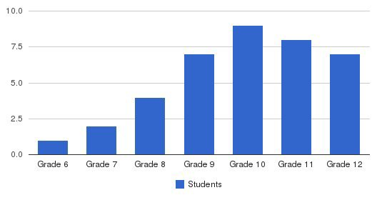 Anderson Academy Students by Grade