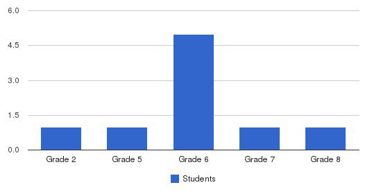 New Life Academy Students by Grade