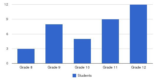 Center Academy High - Bradenton Students by Grade