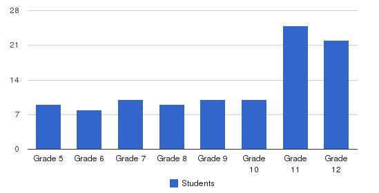 Trinity International School Students by Grade