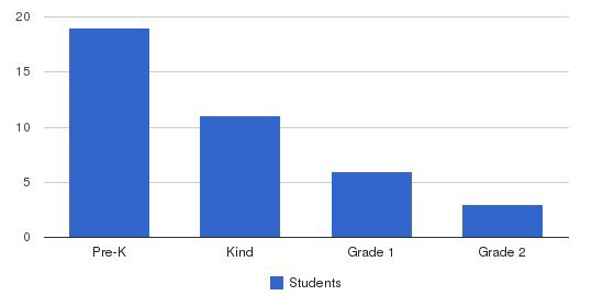 Ilm Academy Students by Grade