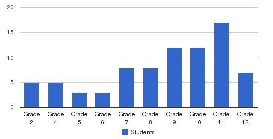 Christbridge Academy Students by Grade