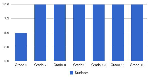 Humanex Academy Students by Grade