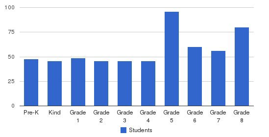 St Damian School Students by Grade