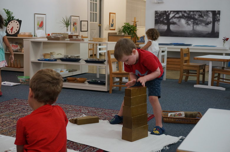 Montessori Children 39 S Community Profile Sewickley Pennsylvania Pa