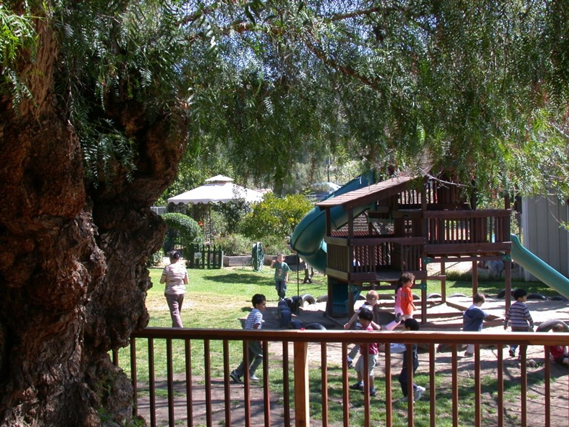 Montessori Child Development Center Photo #1 - Our playground & gardens