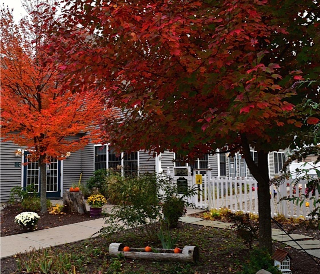 The Children's Tree Montessori School Profile (2018-19