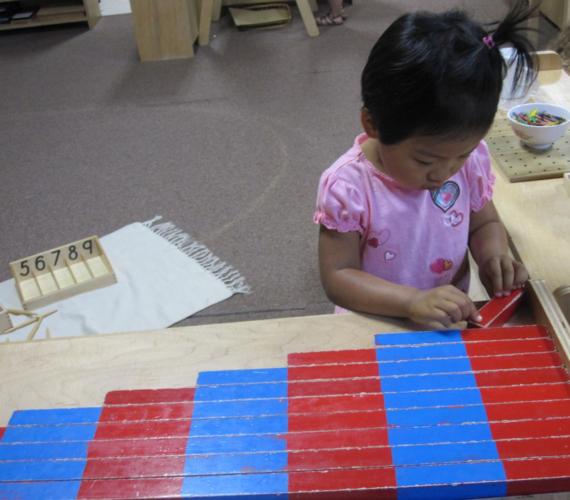 Maple Tree Montessori Academy Photo - Hands on Montessori math takes a child from the very concrete experience of quantity, numeral and geometric materials to the very abstract processes of those same concepts. Developing a mathematical mind and deep ability to focus and concentrate.