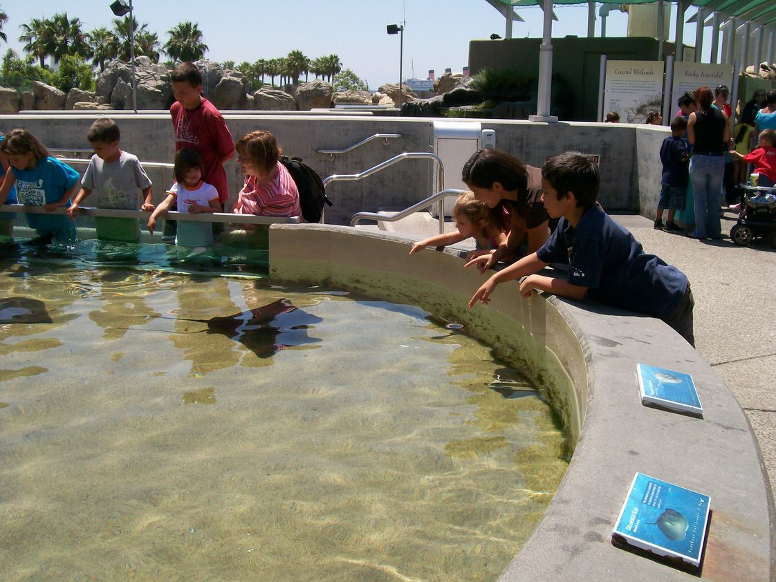 Talega Preparatory Academy Photo #1 - From park days to field trips, student learning flourishes daily.