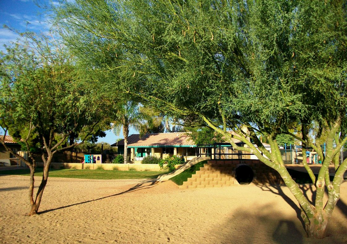 Aldea Montessori Photo #1 - Our beautiful natural playground!