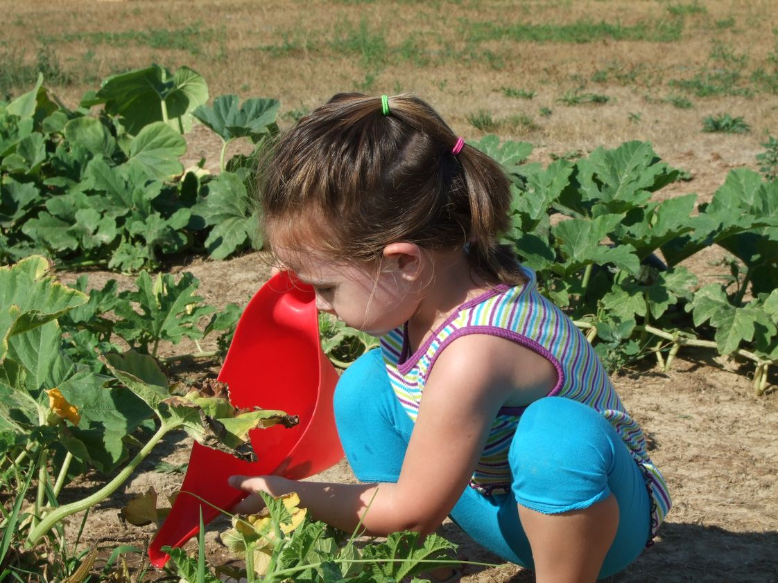 Risen Lord Montessori School Photo - Each classroom cultivates and maintains a raised garden bed of edible and non-edible plants to support their Science and Practical Life curriculum. The children learn about seed cycles, seed dispersal, parts of a plant, basic needs of a plant, flower arranging, cooking.