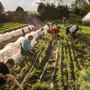 St. Timothy's School Photo #5 - The Redlands Farm at St. Timothy's School is designed to serve as an on-site sustainable farming operation dedicated to growing produce for the campus dining program and supporting experiential learning opportunities for students.