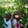 Montessori In The Woods Photo