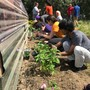 Forest Ridge School Of The Sacred Heart Photo #5 - Service to the community is an important part of the Forest Ridge experiential learning.
