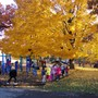 Edgewood Campus School Photo #3 - Our magnificent park-like playground is located on the shores of Lake Wingra.