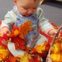 Maryville KinderCare Photo #3 - Using our senses to explore the leaves in the Fall.