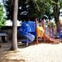 Danville Montessori School Photo - Our naturally tree shaded play yard offers the most energentic child the opportunity to run, play, and grow.