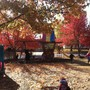 Monarch Montessori School Photo - A crisp Fall day on the playground