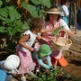 The Waldorf School Of San Diego Photo #4 - Growing our own food is part of our curriculum from KIndergarten on up!