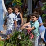 Safety Harbor Montessori Academy Photo #3 - Primary age children in our garden.