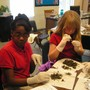 Savannah Adventist Christian School Photo #4 - Fifth and sixth graders dissect owl pellets for a hands-on science lesson.