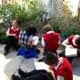 Our Lady Of Charity School Photo #10 - Inquiry Based Learning
